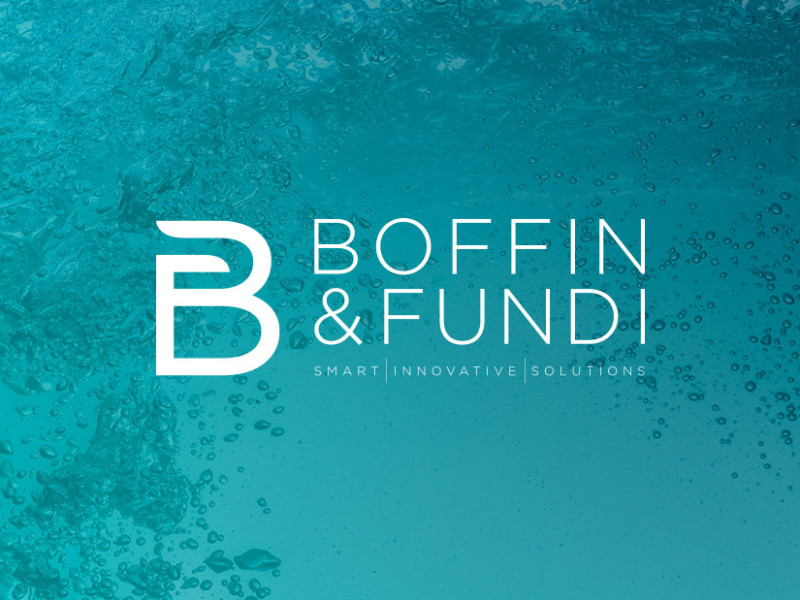 Boffin & Fundi